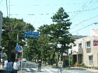 2003_0503toukaidou2
