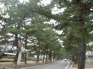 Toukaidou11_8
