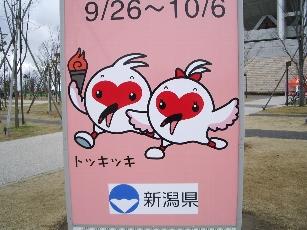 20070311niigata4