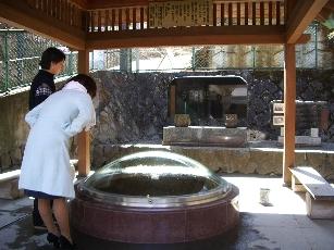 20070321ikaho4
