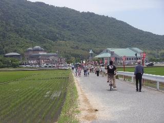 20080601_azuchi9