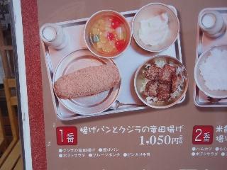20080712_syouwa11