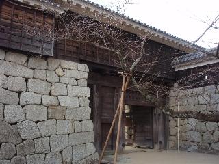 Matsuyama3_4