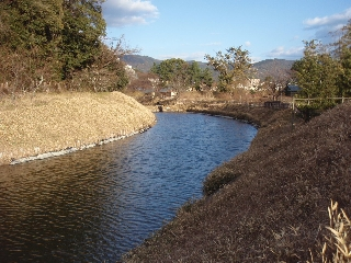 Matsuyama4_4