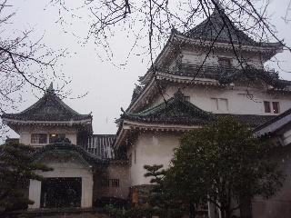 Wakayamazyo8