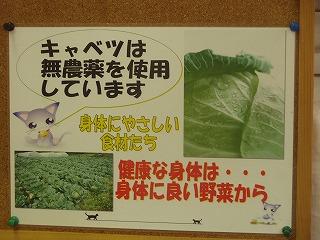 Kure_okonomi03