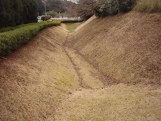 Yamanaka09_03