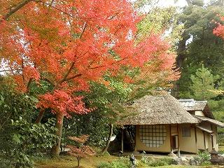 Koudaiji0911_02