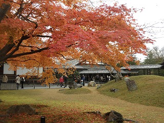 Koudaiji0911_05