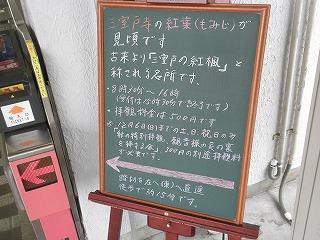 Mimurodo0911_01