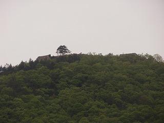Takeda2_0905_14