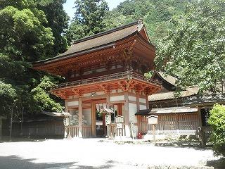 Hiyoshi1008_08