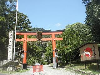 Hiyoshi1008_11
