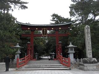 Tsuruga1_02
