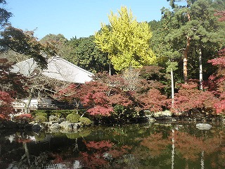 Shimodaigo01