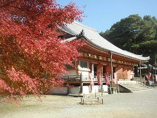 Shimodaigo02