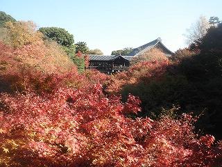 Toufukuji1011_02
