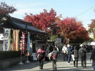 Toufukuji1011_08