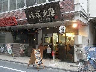 Hanabi1105_05
