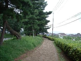 Toukaidou4_13