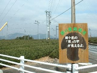 Toukaidou8_2