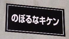 TOYOTA5.jpg