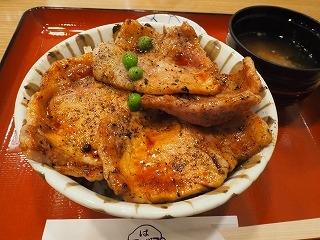 Hage_obihiro002