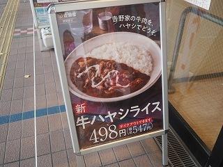 Hayasi_yosinoya002